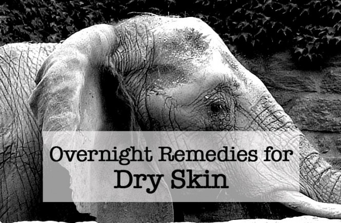 Overnight Remedies for Dry Skin by monkeysmiles